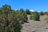 TBD Canyon Springs Rd - Photo 22