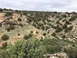 Lot 229 Turkey Ridge Ranch - Photo 14