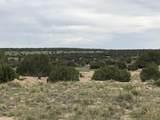 Lot 229 Turkey Ridge Ranch - Photo 18