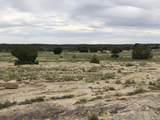 Lot 229 Turkey Ridge Ranch - Photo 19