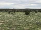 Lot 229 Turkey Ridge Ranch - Photo 4