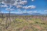 Raspberry Mountain Ranch - Photo 18