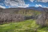 Raspberry Mountain Ranch - Photo 5