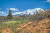 Raspberry Mountain Ranch - Photo 9
