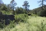 000 Ponderosa Hills - Photo 22