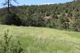 000 Ponderosa Hills - Photo 23