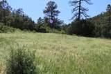 000 Ponderosa Hills - Photo 26