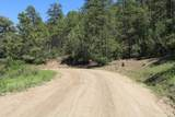 000 Ponderosa Hills - Photo 29