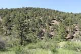000 Ponderosa Hills - Photo 30