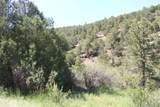 000 Ponderosa Hills - Photo 31