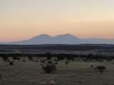 183 Tyrone Hills - Photo 1