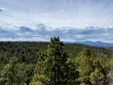 33291 Mountain View - Photo 60