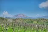 TBD Primavera Place - Photo 5