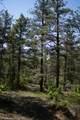 Tree Valley Lane - Photo 1