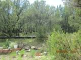 9651 County Rd 20.8 - Photo 39