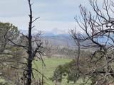 TBD Andes Loop - Photo 12