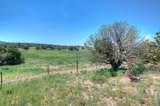 601 County Road 620 - Photo 98