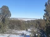 Lot 2 Apache Creek Ranch - Photo 11