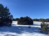 Lot 2 Apache Creek Ranch - Photo 12