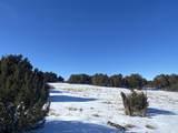 Lot 2 Apache Creek Ranch - Photo 13