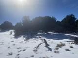 Lot 2 Apache Creek Ranch - Photo 2