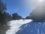 Lot 2 Apache Creek Ranch - Photo 3