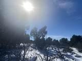 Lot 2 Apache Creek Ranch - Photo 4