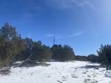 Lot 2 Apache Creek Ranch - Photo 6