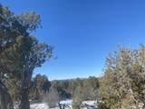 Lot 2 Apache Creek Ranch - Photo 9