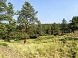 13254 South Point Rd - Photo 49