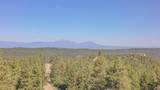 33043 Trail Ridge - Photo 7