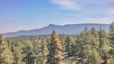 33043 Trail Ridge - Photo 8