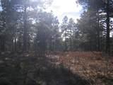 33043 Trail Ridge - Photo 9