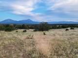 TBD Navajo Ranch Resorts #2 - Photo 7