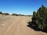 TBD County Road - Photo 3