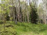Aspen Circle - Photo 2