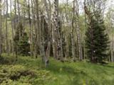 Aspen Circle - Photo 4