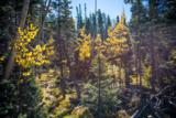 Lot 1 Cuchara Pass Ranch - Photo 1