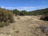 8300 Adobe Ranch Rd - Photo 28