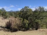 8300 Adobe Ranch Rd - Photo 33