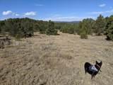 8300 Adobe Ranch Rd - Photo 43