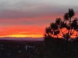 33040 Fisher Peak Pkwy - Photo 64