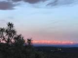 33040 Fisher Peak Pkwy - Photo 66
