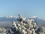 33040 Fisher Peak Pkwy - Photo 70