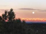33040 Fisher Peak Pkwy - Photo 75