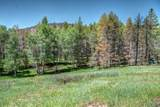 3652 Co Rd 443 - Photo 75