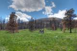 3652 Co Rd 443 - Photo 9