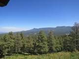 33161 Fisher Peak Pkwy - Photo 48