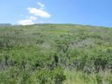 32 Raspberry Mt. Ranch Filing #3 - Photo 7