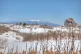 TBD Muleshoe Road - Photo 19